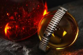 Foto 15 Schmuckabend mit Energetix Magnetschmuck