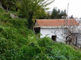 Schmuckes kleines Steinhaus auf dem Pilion