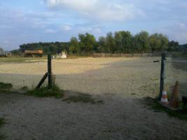 Foto 3 Schnell sein lohnt sich: Begehrter Paddockboxplatz frei!