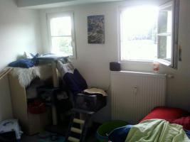 Foto 8 Schöne 3- Zimmerwohnung
