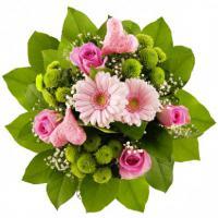 Schöne Blumen günstig mit 7-Tage Frischegarantie