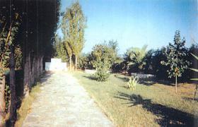 Foto 4 Schöne Landvilla nahe der Stadt Preveza/Epirus/Griechenland