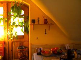 Foto 7 Schöne Wohnung im Biodorf / Mariahalom in Ungarn