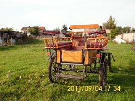 Foto 2 Schöne gepflegte Wagonette für 6 Personen zu verkaufen