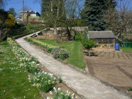 Foto 2 Sch�nen Gro�en Garten in Wei�enfels/West G�ldene Hufe