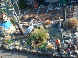 Foto 2 Schöner Kleiner Pacht Garten