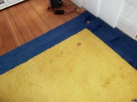 Foto 3 Schöner großer Gabbeh, 2,50 x 3,60 m, gelb/blau