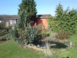 Schöner  großer Pachtgarten zu verkaufen