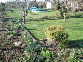Foto 3 Schöner  großer Pachtgarten zu verkaufen
