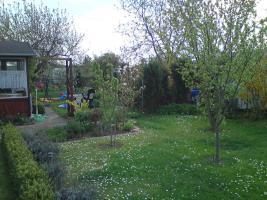 Foto 5 Schöner  großer Pachtgarten zu verkaufen