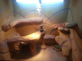 Schönes 100x80x60 Terrarium mit 3D-Rückwand (NEU)