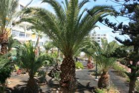 Foto 9 Schoenes Apartment Zentrum Playa del Ingles
