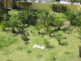 Foto 10 Schönes Appartement in Playa del Ingles zu verkaufen