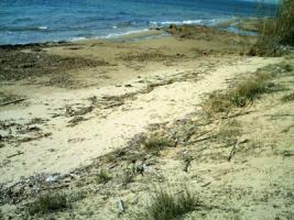 Schönes Grundstück direkt am Meer / Griechenland