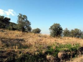 Schönes Grundstück nahe Galatas/Griechenland
