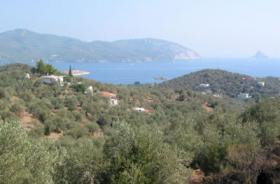 Schoenes Hanggrundstueck nahe Galata/Griechenland