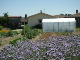 Foto 2 Schönes Steinhaus mit grossem Garten in Galicien, Spanien