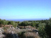 Schoenes grosses Grundstueck nahe Kalamata / Griechenland