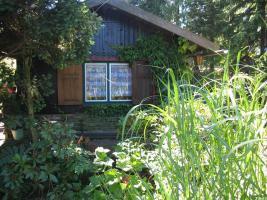 seitliche Ansicht des Gartenhauses