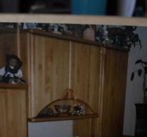 Foto 2 Schrankwand massiv Holz