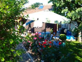 Foto 2 Schrebergarten mit schönem Gartenhaus abzugeben