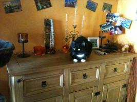 Foto 4 Schwarze Katze ''mit weissen Socken'' in liebevolles zu Hause abzugeben.