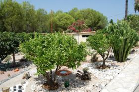 Foto 6 Sehr hübsche Villa in Els Poblets an der Costa Blanca