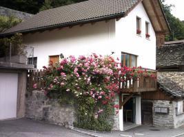 Foto 3 Sehr sch�nes Ferienhaus in den Tessiner Bergen