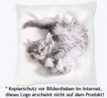 Sibirische Katze Fanartikel