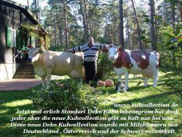 Sie suchen eine Deko Kuh lebensgross dann kommen Sie zu Deko mit Pfiff International / Tel. 033767 30750