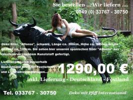 Sie suchen einen Deko Stier oder Deko kuh oder Deko Bullen ja dann einfach www.dekomitpfiff.de anklicken