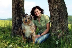 Foto 3 Sie suchen einen gesunden gut sozialisierten Australian Shepherd Welpen ???