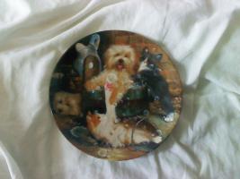 Foto 6 Sieben seltene Teller von Seltmann Weiden zu verkaufen!!!