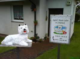 Sigrid, s Hunde-Salon