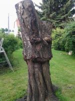 Skulpturen aus Holz