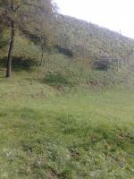 Slowenien Grundstück und Wald zu verkaufen