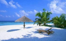 Sommer, Sonne, Strand? Bei mir sind Sie richtig