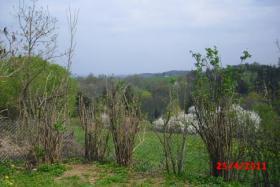 Foto 4 Sommerwohnsitz zu verkaufen in Pirk (Vogtland)