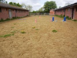 Foto 5 Sonniges Zimmer (un-/mobliert) + Garten sowie Offenstall