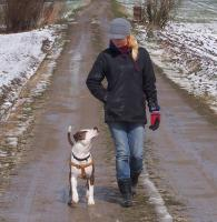 Sonntag - Hundeschule in M�nchen