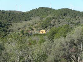 Foto 2 Spanischer Bauernhof