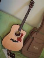 Spitzen-Westerngitarre Taylor 110 CE - absolut neuwertig!!!
