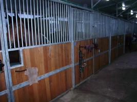 Foto 8 Stall , Box, Panel, Zwinger, uww. , usw.