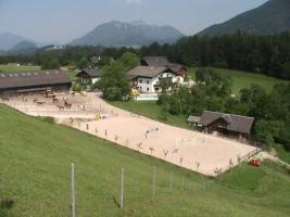 Suche Reitbeteiligung aus dem Raum Bad Ischl und Umgebung