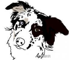 Foto 2 Suche - Trainingsplatz f�r die TEAMSCHULE ''Mensch - Hund''