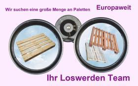 Suchen gebrauchte Europaletten, Einwegpaletten