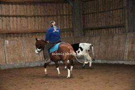 Foto 2 TOP Deckhengst A Smokin Little Gun (AQHA & APHA, Foundation, Quarter Pony, Pinto)