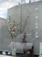 Foto 7 Tageweise mieten-stillvolle möblierte Ladenpraxis inkl. Ausstatung-sofort arbeiten