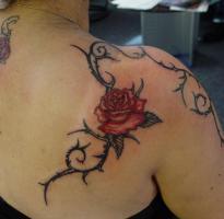 Foto 9 Tattoo Piercing Tattooseminar Permanent-Make-up Seminar Schmuck