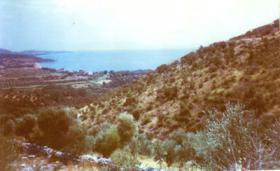 Taumgrundstück in der Mani/Griechenland